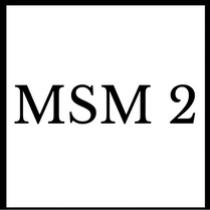Gruppenlogo von MSM 2