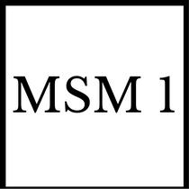 Gruppenlogo von MSM 1