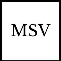 Gruppenlogo von MSV